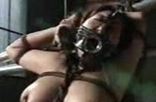 SM Big Cup Hunter.  xxx porn