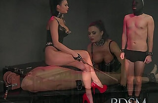 BDSM XXX Caged subs are humiliated before coming out to play.  xxx porn